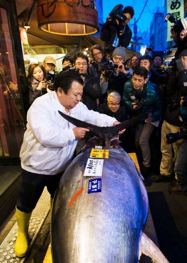 The President of the sushi restaurant chain Sushi Zanmai, Kiyoshi Kimura, removes the fin of a blue fin tuna outside his main restaurant at the outer Tsukiji market, in Tokyo