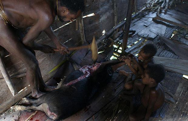 племя короваи_23