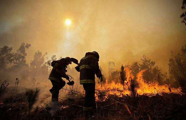 пожар в Чили_1