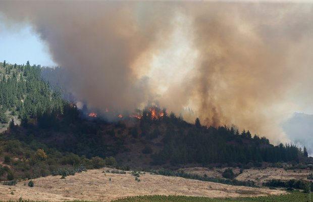 пожар в Чили_9