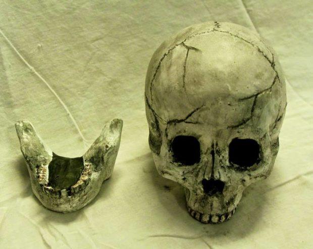 черепа_6