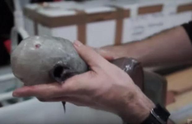 рыба без глаз__