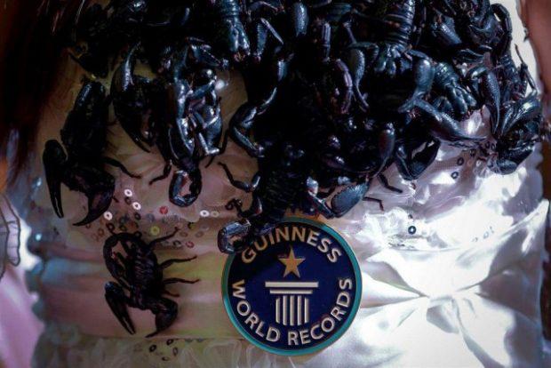 скорпионы_13