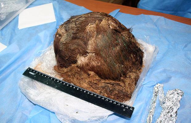 900 летняя мумия_9