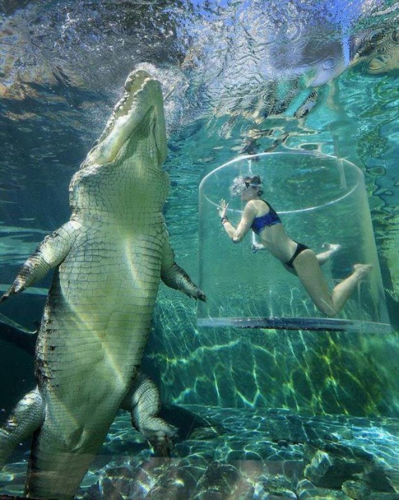 20 фото, которые заставят задуматься о реальных размерах человека в нашем мире Природа