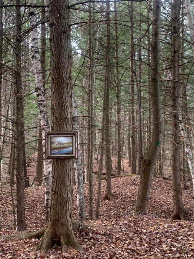 14 жутких и таинственных находок во время обычных прогулок в лесу