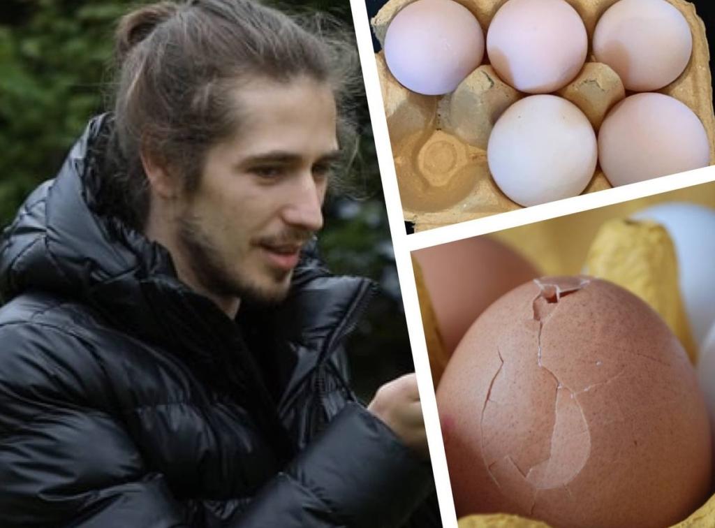 Парень навсегда отказался от яичницы, после того, как купил в супермаркете яйца и увидел, что из них выросло