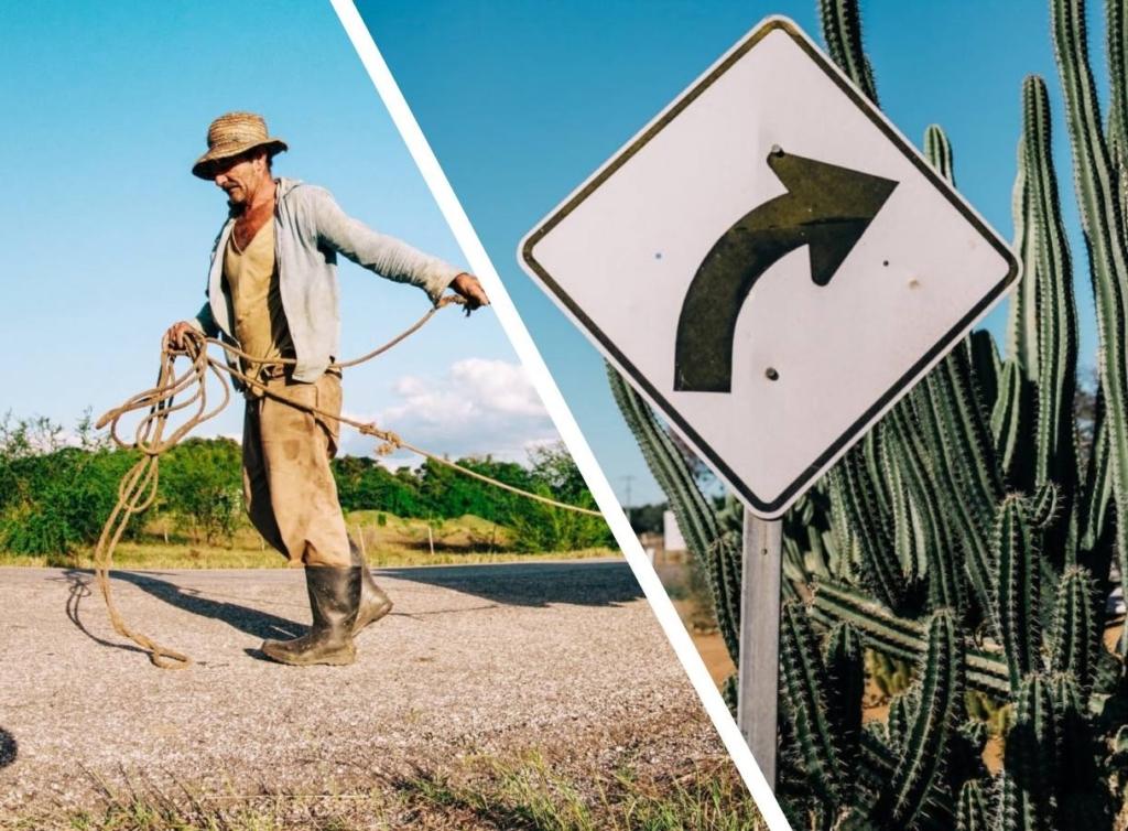 Бельгийский фермер случайно увеличил границу страны на 3 метра и тут чуть не началась пограничная война